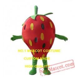 Strawberry Mascot Costume