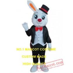 Rabbit Gentleman Mascot Costume