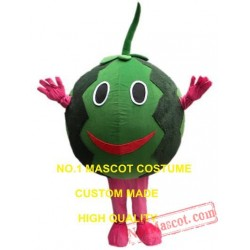 Watermelon Mascot Costume