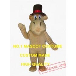 Mr Camel Mascot Costume