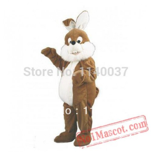 Easter Fat Rabbit Mascot Costume
