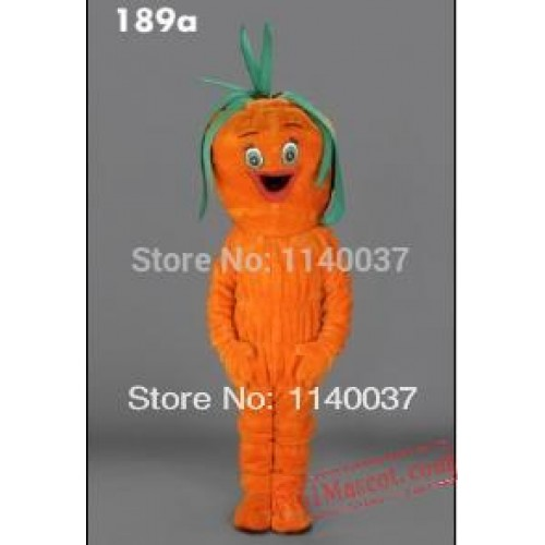 Carrot Vegetable Mascot Costume