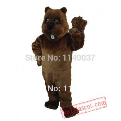 Plush Woodchuck Mascot Costume