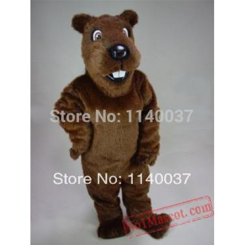 Gopher Mascot Costume